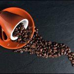 Philz Coffee Menu Prices
